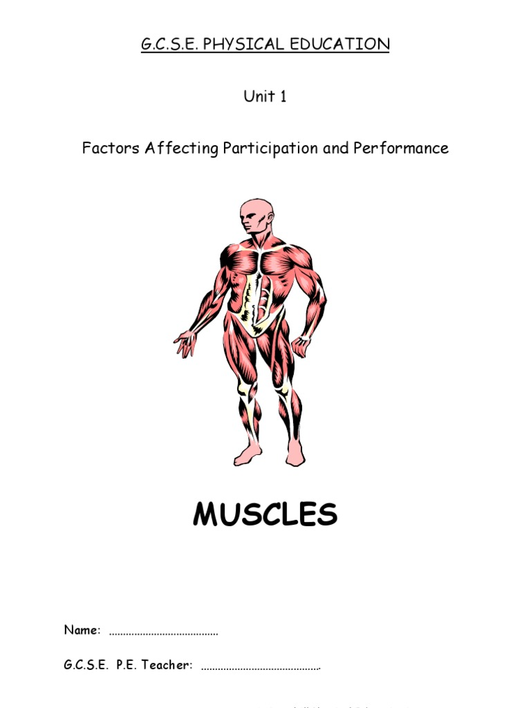 Wunderbar Unit 1 Principles Of Anatomy And Physiology In Sport ...