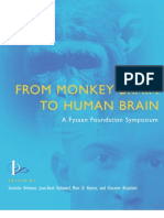 From Monkey Brain to Human Brain