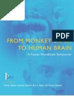 From Monkey Brain to Human Brain