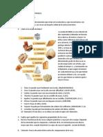 2.MATERIALES PETREOS NATURALES