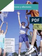 EFECTORES Y RECEPTORES.pdf