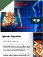 Presentacion Aparato Digestivo.pptx