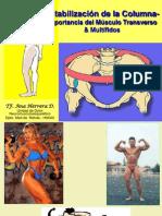 Estabilizacion Lumbo-pelvica (Transverso & Multifidos)