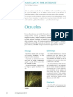 Orzuelo y Chalazion