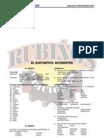 29936263-EL-SUSTANTIVO-ACCIDENTES.pdf