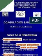 coagulacion sanguinea.pdf