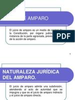 JUICIO_AMPARO_INDIRECTO[1].ppt