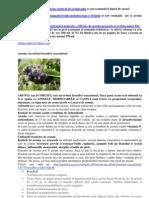 ARONIA MELANOCARPA.docx