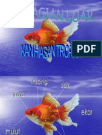 Label Ikan
