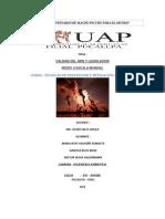 Trabajo Monografico Tecnicas Redes Mundiales