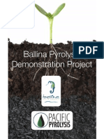 Ballina Pyrolysis Project Flyer