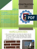 MURO CARAVISTA.pptx