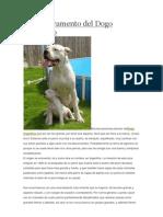 El Temperamento Del Dogo Argentino
