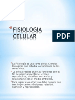 Expo de Biologia Fisiologia Celular
