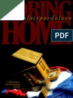 Boring Home de Luis Pardo Lazo, 2009