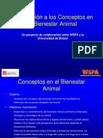 Introducción_a_Los_Conceptos.pdf