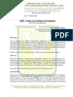 SVB Virus Schmallenberg