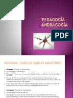 Andragogia vs. Pedagogia
