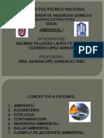 Exp Ambiental1