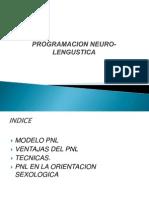 PNL EXPOSICION 2