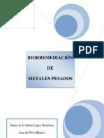 Master Metales Pesados