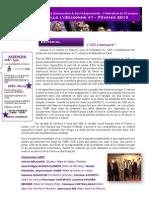 Lettre info de l'UDI 91 - Février 2013