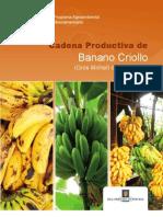 Cadena Productiva de Banano Criollo (Gros Michel) de Costa Rica 2011
