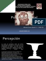 Psicologia Social Presentación