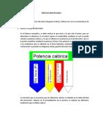 _PRÁCTICA_TERMO3_MOTORES