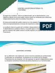 Exp. Auditoria Interna II