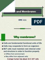 Module 10 - Cell Membranes