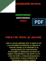 Dishomeostaziile termice
