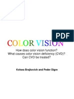 color vision presentation1