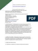 Varios Sistemas de Informacion Gerencial