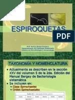 Espiroquetas Borrelia y Brachyspira 2013 BREVE