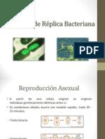 Formas de réplica bacteriana.pptx