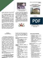 Pliant Admitere Liceu 2012-2013