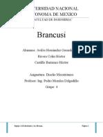 Diseno de Brancusi