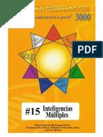 015 Inteligencias-Multiples P3000 2013