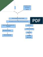 PCAP-PATHOPHYSIOLOGY