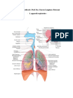 AP.respirator