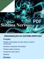 Sistema Nervoso Pronto