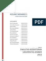 SKENARIO.docx