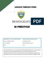 MONOGRAFÍADE PRACTICA.docx