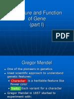 Gen(Struktur Dan Fungsi) 1
