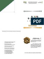 Folleto Escolta 2012-2013