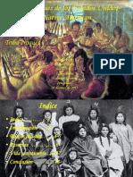 Los Indigenas de Los Estados Unidos-Native American2