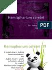 Hemisphere Cerebri_ Zahra