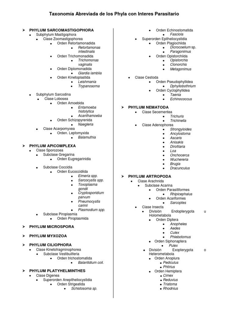 Ascaris taxonómia