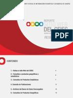 Reporte_sitio_Web_CEIEG_2010-2012.pdf